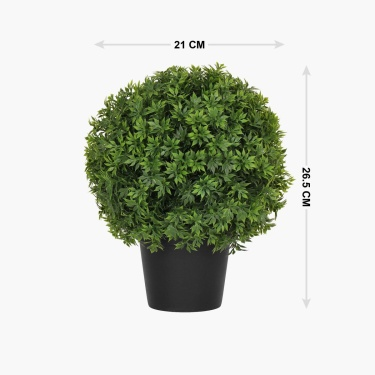 Sachi Monochoria Ball Planted Plastic Pot