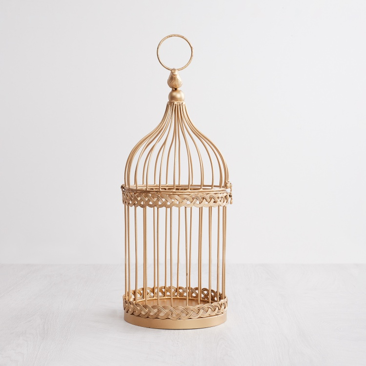 Splendid Bird Cage