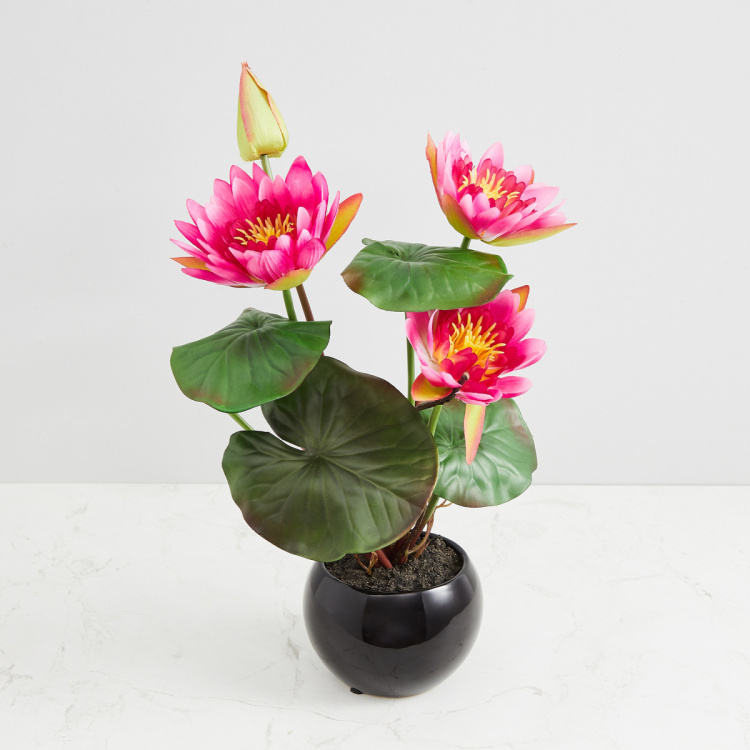 Valencia-Sachi Solid Four Head Lotus in Ceramic Pot