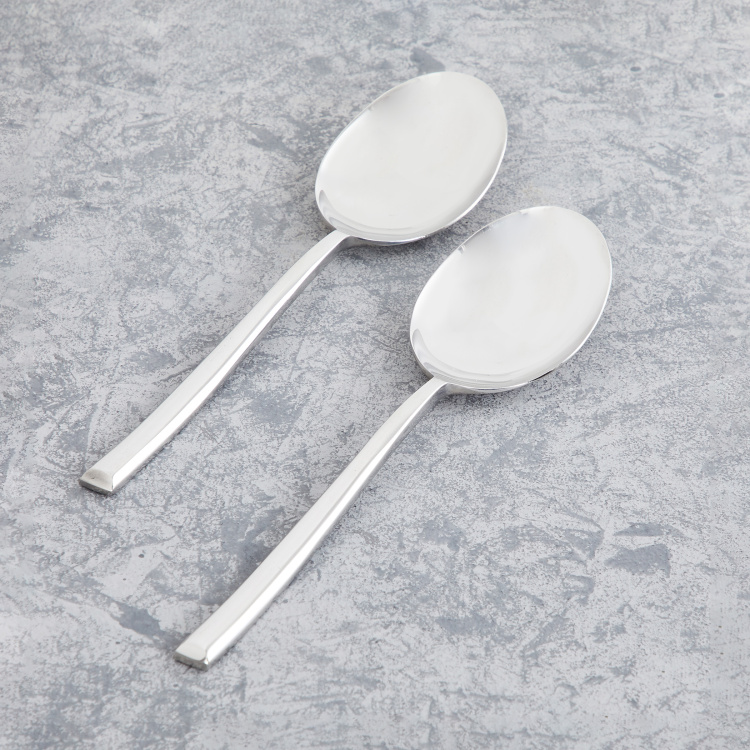 FNS 2-Piece Serving Spoon Set
